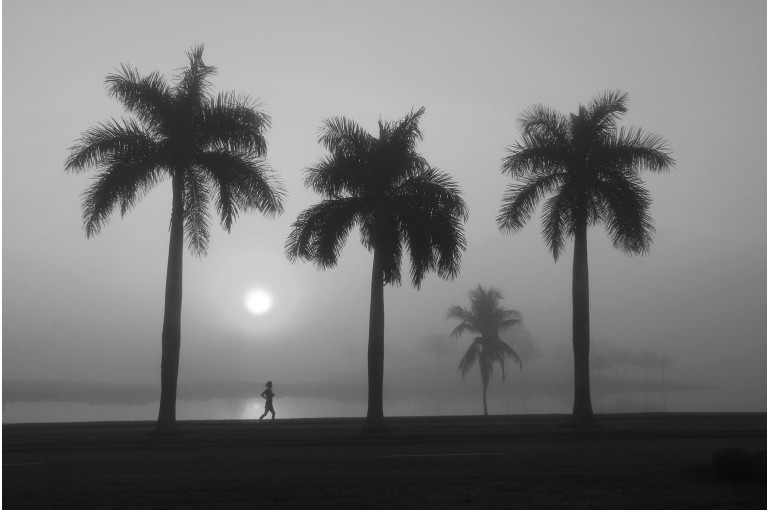 Misty Morning with Runner