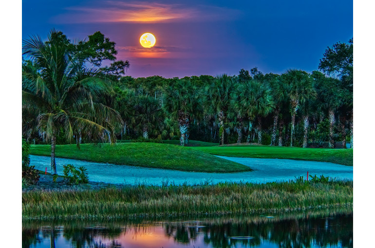 Moon Rise over Crown Colony